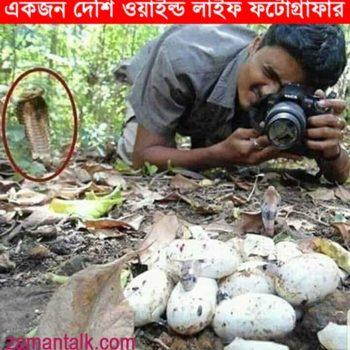 Wildlife-Photographer
